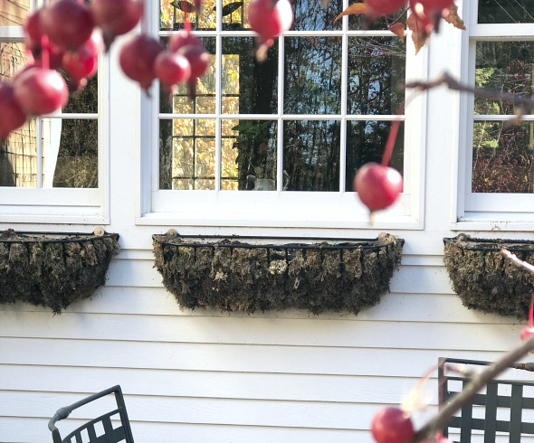 How to decorate outdoor hangers for the winter