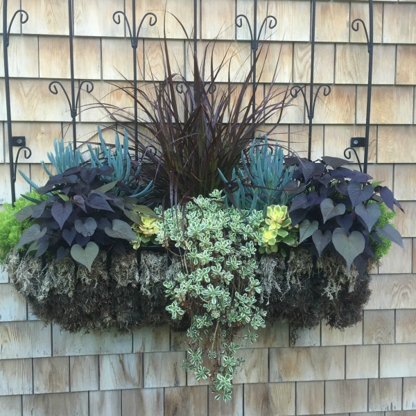 How to decorate outdoor hangers for the winter Example of filled hanging planters from summer growth