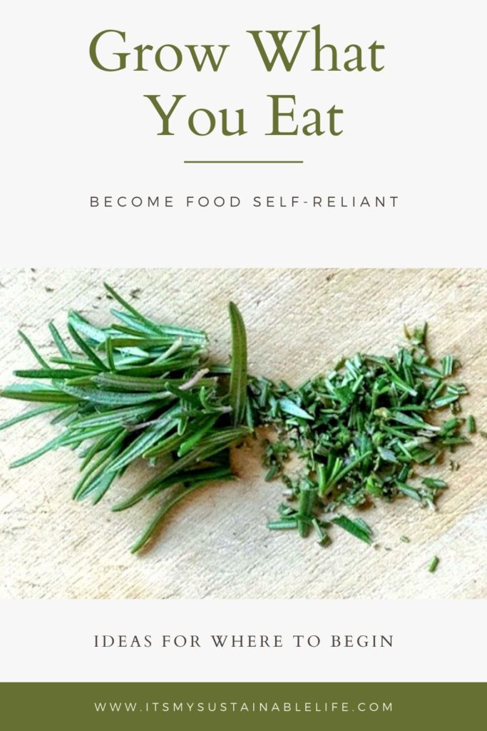 How To Grow What You Eat pin for Pinterest
